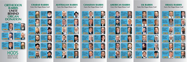 International Rabbis Brochure - Front and Back